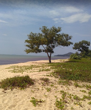 Pasir Panjang tengerparti része