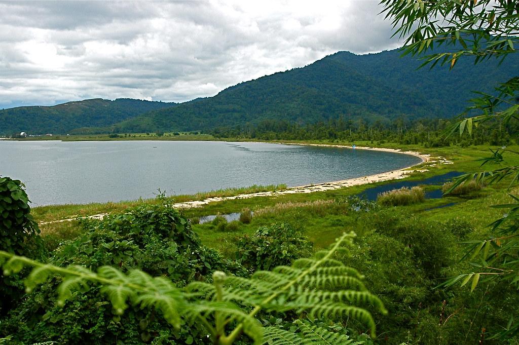 Poso-tó mentén gazdag növény- és állatvilág jellemző.